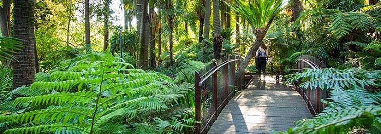 Royal Botanic Gardens Victoria in Melbourne