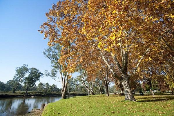 Hume in Victoria State Australia