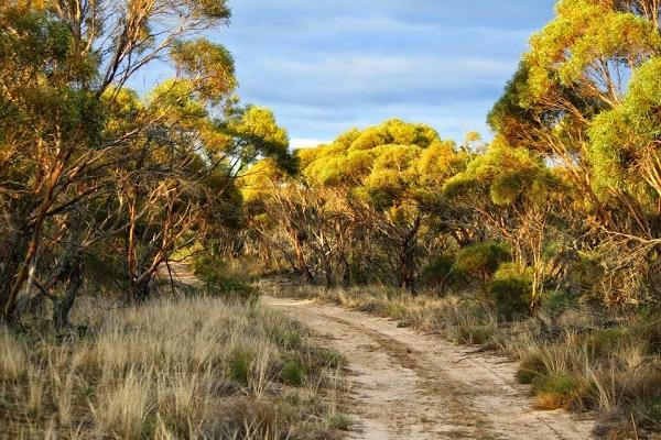 Loddon Mallee Melbourne Australia